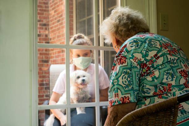 sociaal ver distantiërend bezoek door glas - raam bezoek stockfoto's en -beelden