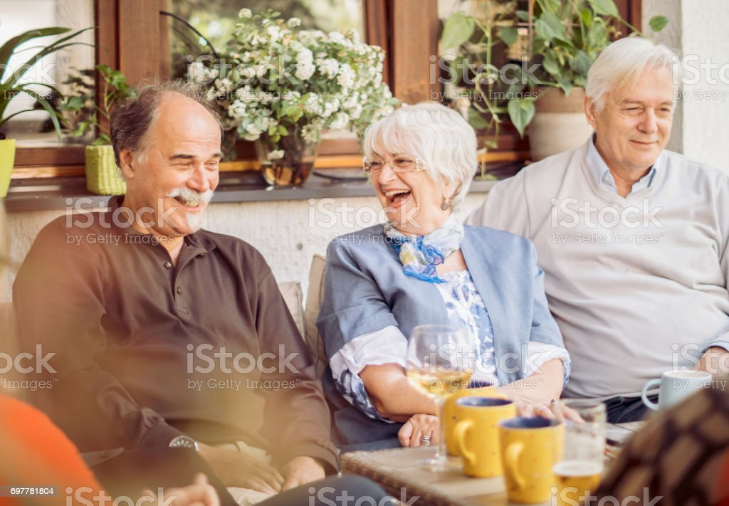 Social Seniors Group Of Mature Friends Enjoying Outdoor Meal In Backyard stock photo