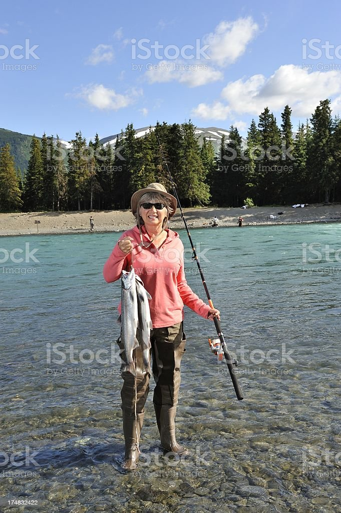 Sockeye Salmon royalty-free stock photo