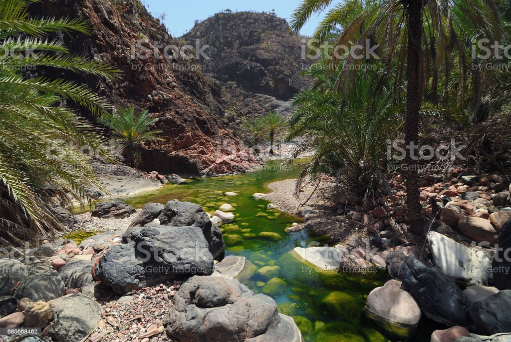 Socotra island, river in Wadi Dirhur. Yemen 免版稅 stock photo