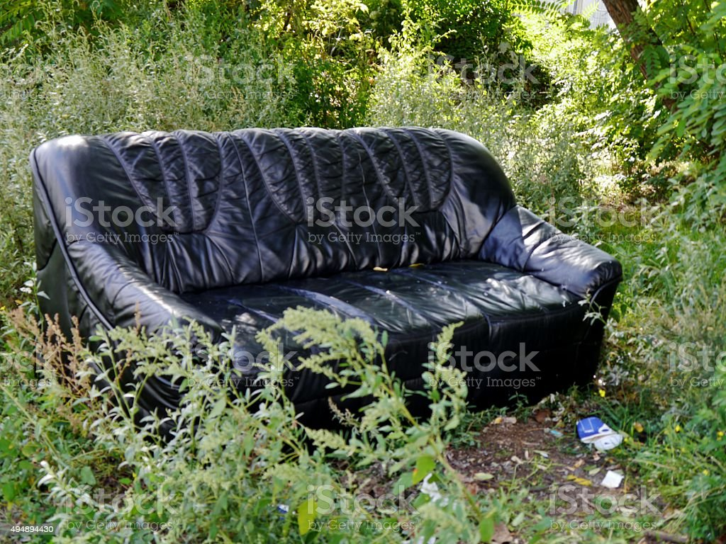 Sofa Im Gebüsch – Foto