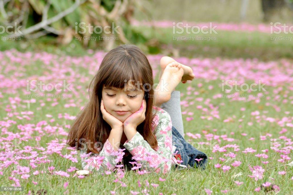 Sofie flores royalty-free stock photo