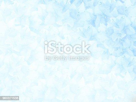 652288118istockphoto soft and blurred blue Bouginvillea flower 960321538