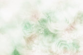 Soft and blurred bouquet of roses on white background