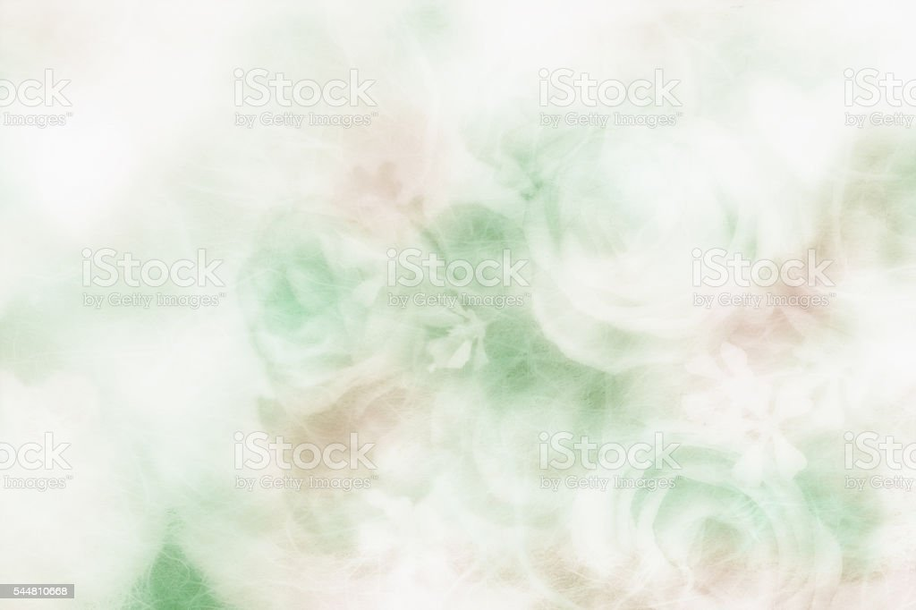 Soft and blurred bouquet of roses on white background stock photo