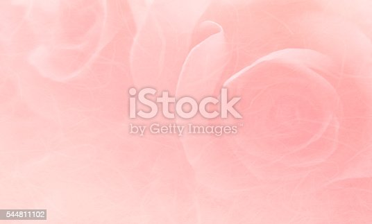 istock Soft and blurred bouquet of roses on white background 544811102