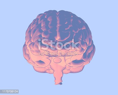 692684668istockphoto Soft color human brain illustration isolated on blue BG 1173705124