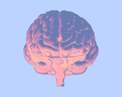 692684668 istock photo Soft color human brain illustration isolated on blue BG 1173705124