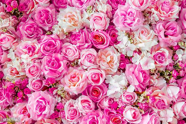 Soft color roses background picture id487475162?b=1&k=6&m=487475162&s=612x612&h=1xl5exhy9z4ezeunz96oaedo9kp5yddy9zxehensbyw=