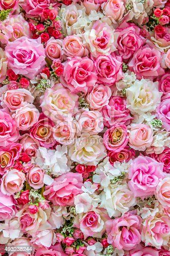 istock Soft color Roses background 493238244