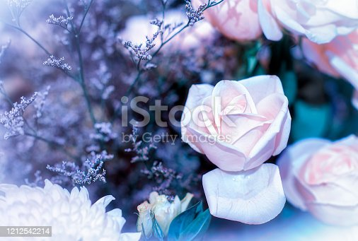 istock Soft color Roses Background Retro filter. 1212542214