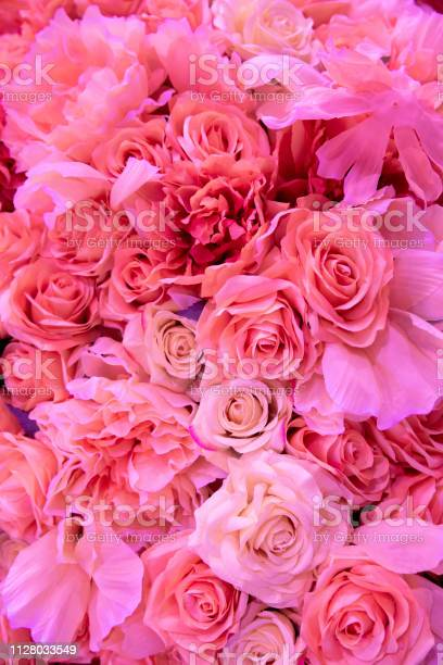 Soft coral pink color roses background picture id1128033549?b=1&k=6&m=1128033549&s=612x612&h=vorv6v5xrvygofgpvqcz6t4k l 6cg5xrzpx0kzs240=