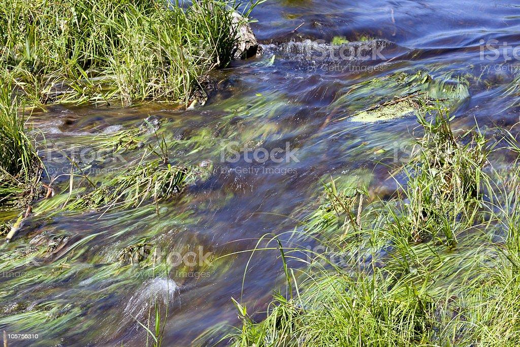 Soft Flowing Stream stock photo