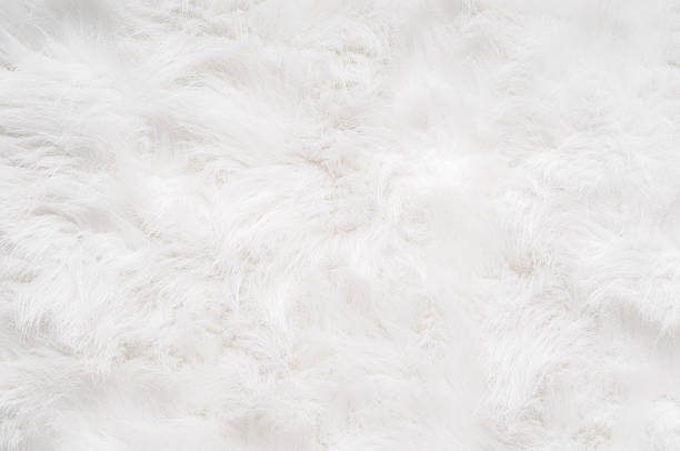 Soft, Fluffy Background