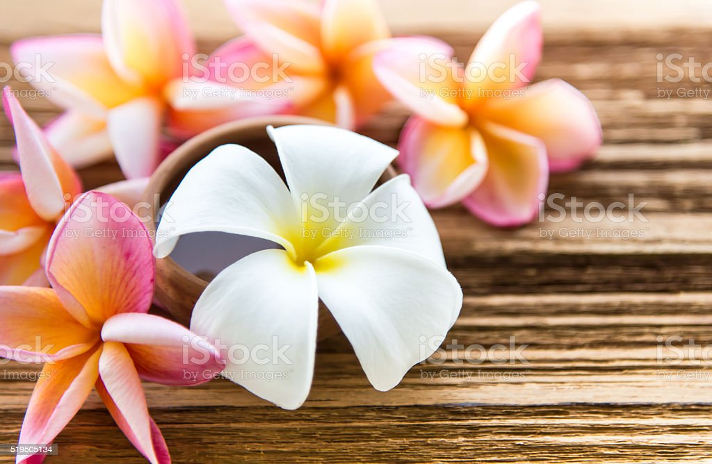 Soft focus and blur background Plumeria flower on wood table stock photo