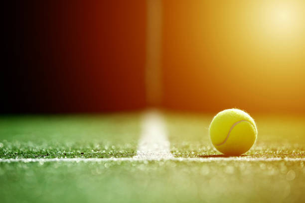 soft focus of tennis ball on tennis grass court with sunlight - tennis stock pictures, royalty-free photos & images