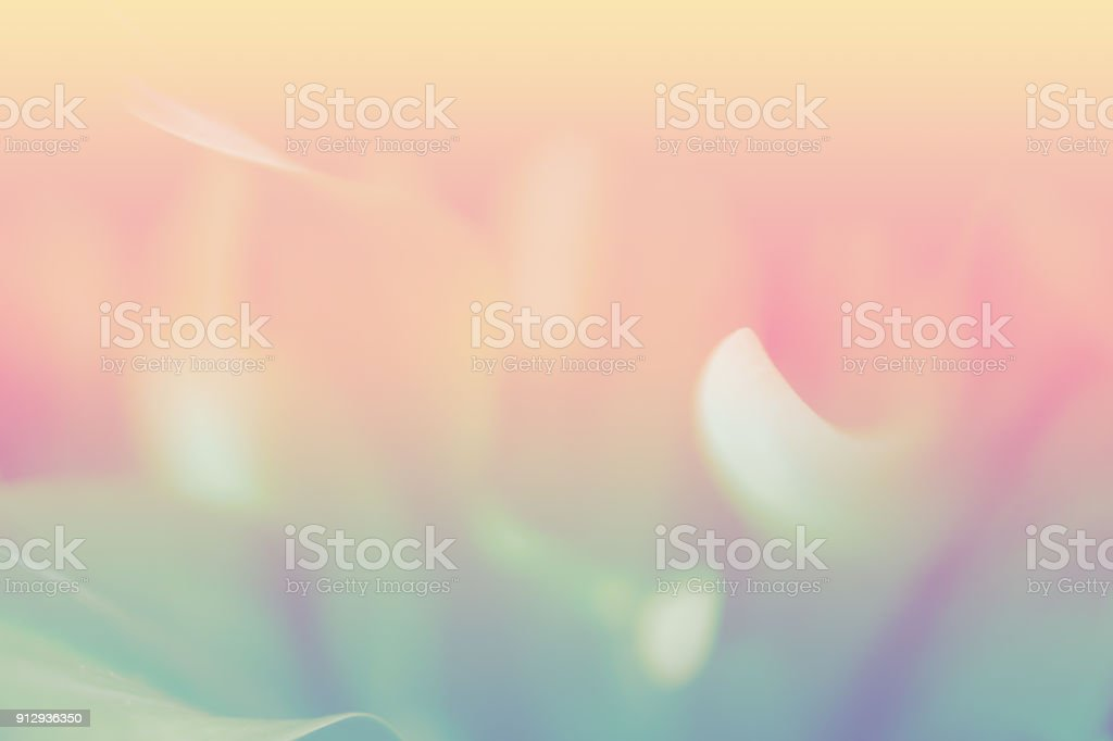 soft focus pastel  abstarct  peaceful  color  background stock photo