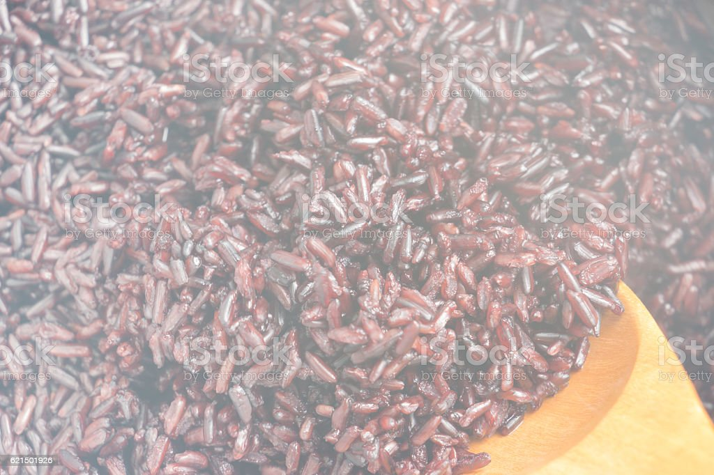 soft focus  Rice berry cooked photo libre de droits