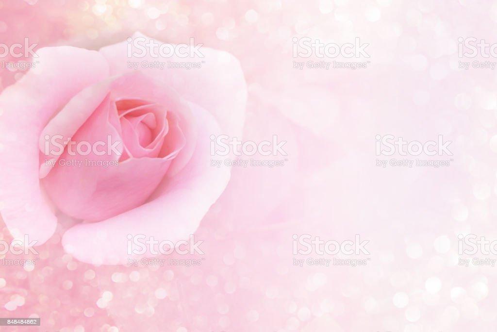 Soft pink flower background and glitter light with copy space stock soft pink flower background and glitter light with copy space royalty free stock photo mightylinksfo