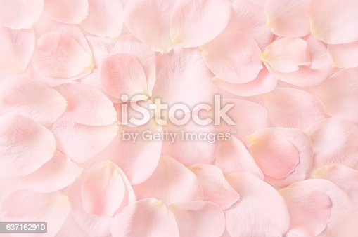 istock soft pink rose petals background 637162910