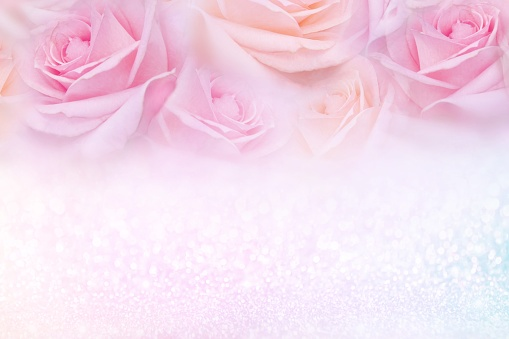 652288118 istock photo soft pink roses flower frame with glitter background and copy space for text 1130689926