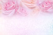 istock soft pink roses flower frame with glitter background and copy space for text 1130689926