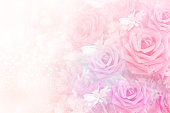 istock soft romance roses flower in sweet pastel tone background 985084530
