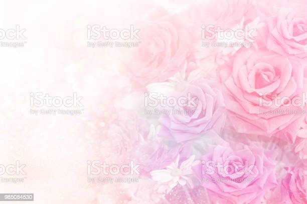 Soft romance roses flower in sweet pastel tone background picture id985084530?b=1&k=6&m=985084530&s=612x612&h=u7vyfuihoy9f8a6 xqsijzxdu778xmdf51yue xtark=