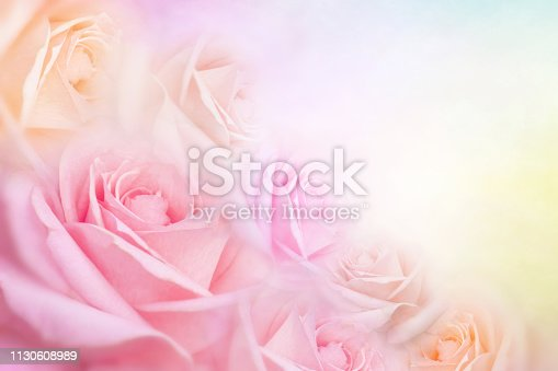 612015846 istock photo soft roses flower background with copy space for text 1130608989