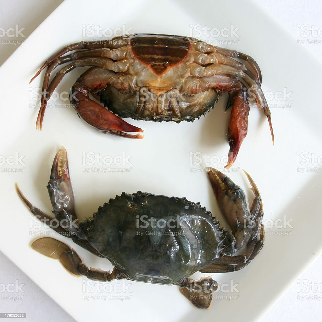 Soft shell crabs stock photo