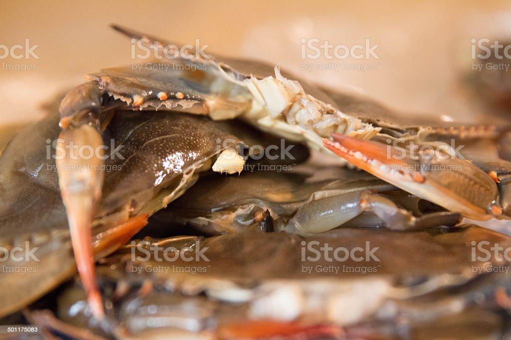 Soft Shelled Crab Pile stock photo