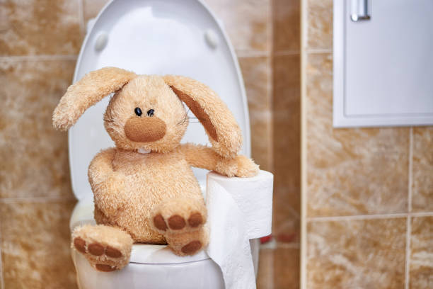 Soft stuffed rabbit with toilet paper in the toilet concept of copy picture id1148503395?b=1&k=6&m=1148503395&s=612x612&w=0&h=srvoedhuctelxphlol1akztvish n0dj7ysd5w pvme=
