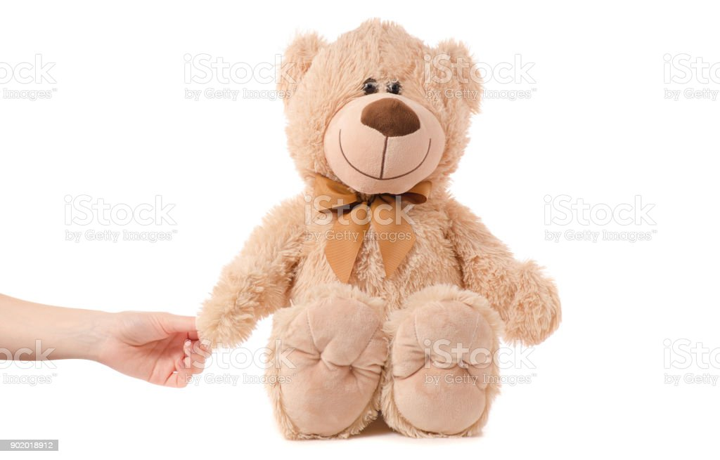 Soft toy beige bear in hand stock photo