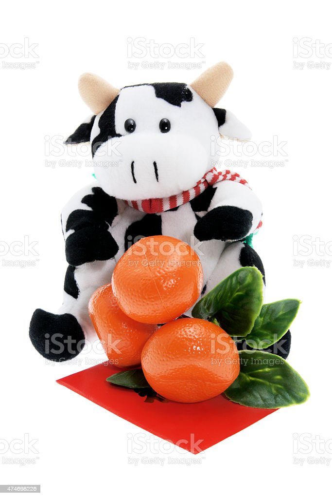 Soft Toy Cow and Tangerine Ornament stock photo
