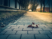 Soft toy dog ​​lies on the road close-up view, the car in the distance, evening scene.
