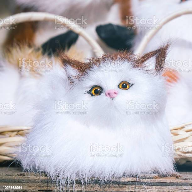 Soft toys kittens sitting in front of the camera picture id1097363564?b=1&k=6&m=1097363564&s=612x612&h=an xcoifq2icoh8i2q kseczv8fbjfvvoogwvvjkzgy=