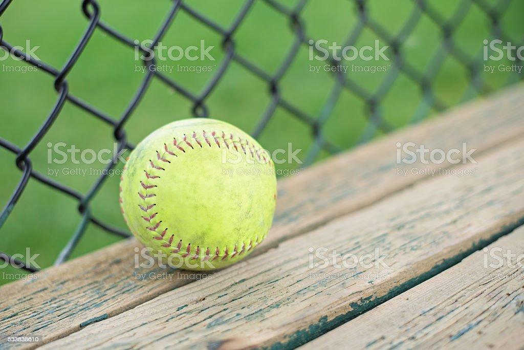 Softball on players bench stock photo