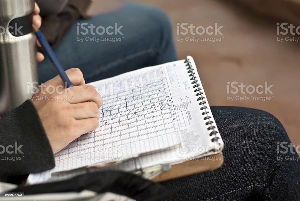 Softball Scorekeeping stock photo