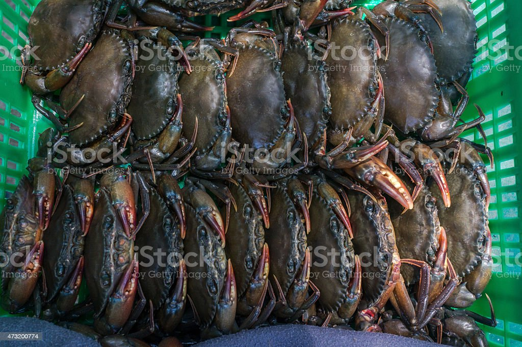 Soft-shelled crabs in green basket stock photo