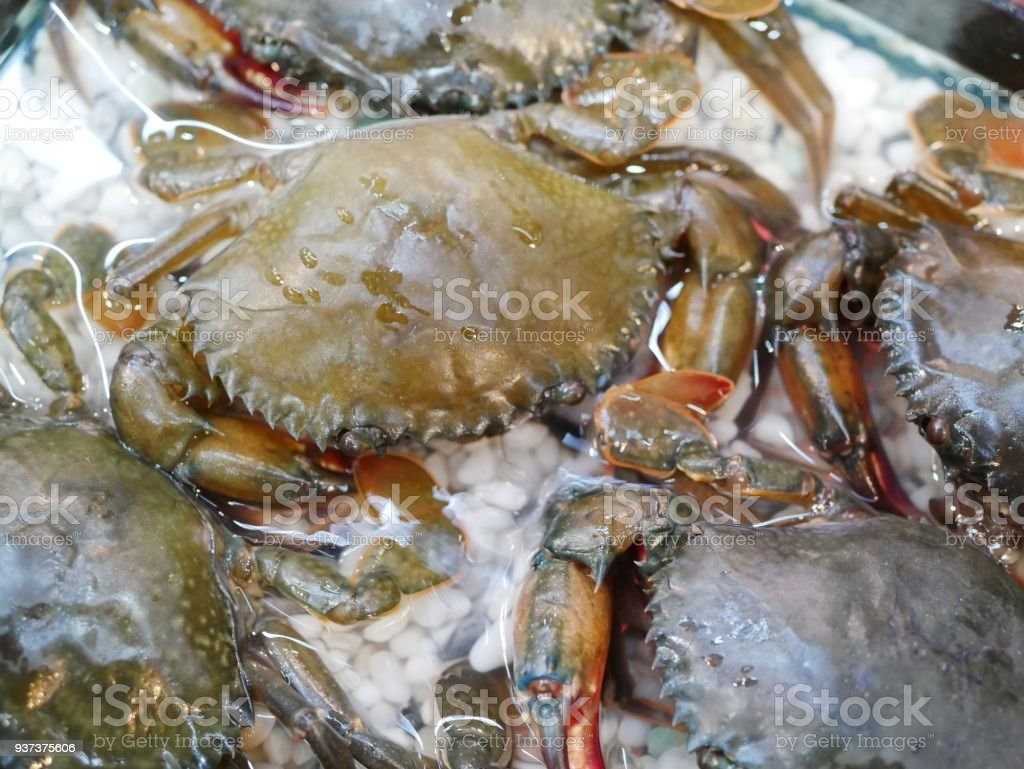 Soft-shelled crabs stock photo