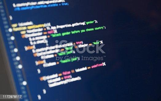 istock Software code 1172978117