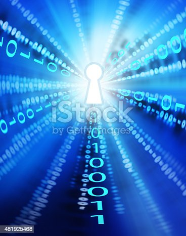 istock Software / Internet Security 481925468