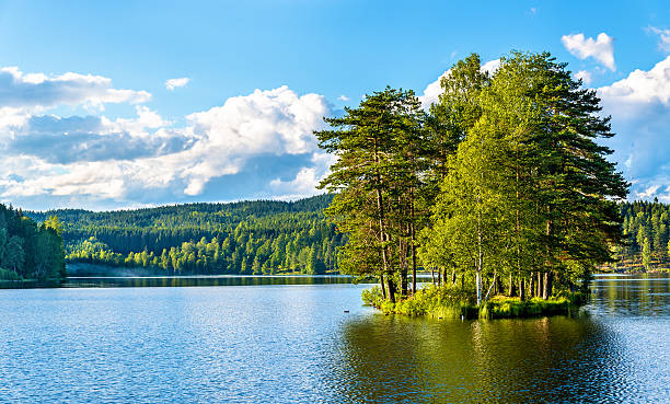 sognsvann lake north of oslo - meeroever stockfoto's en -beelden