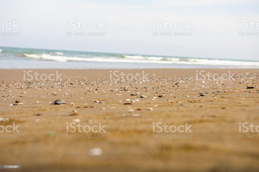 Sohar beach foto de stock libre de derechos