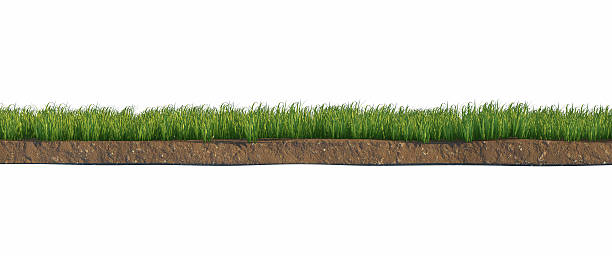 Soil and green grass layers isolated on white background stock photo