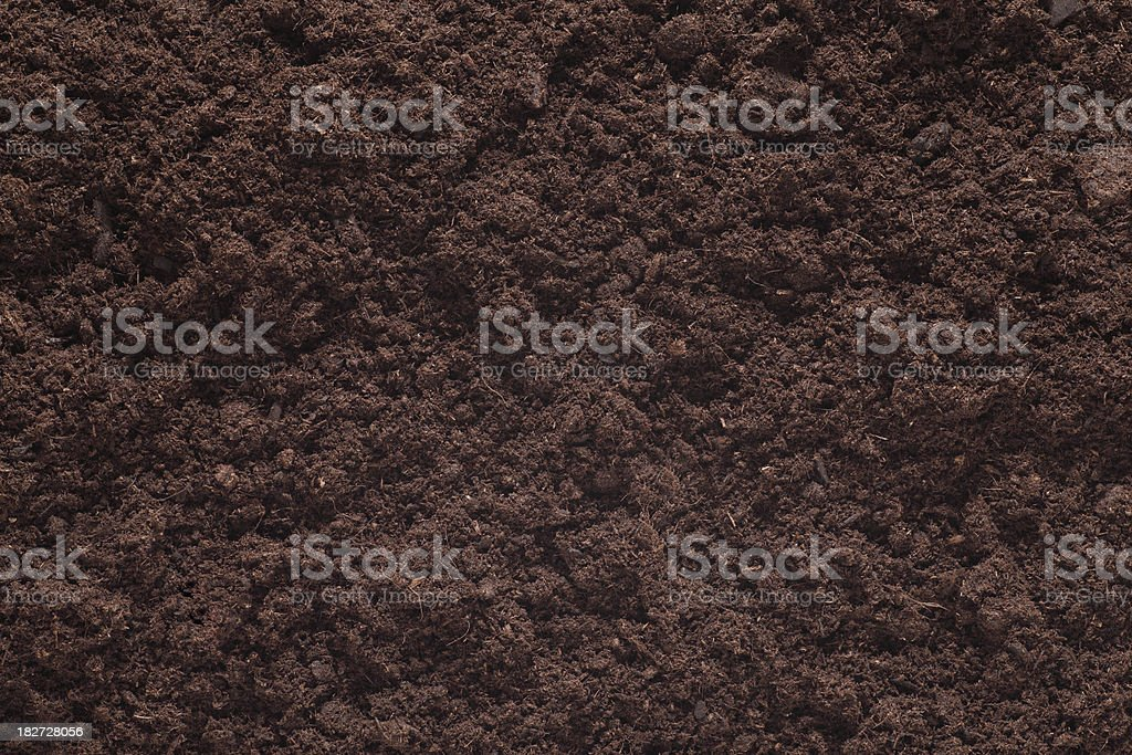 Soil Background. Brown Plant. stock photo