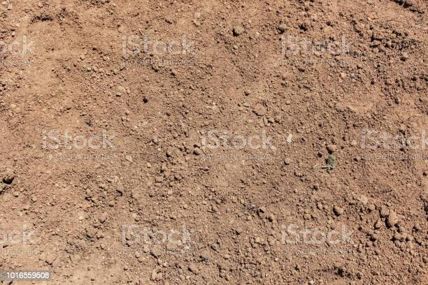 Photo of Soil background