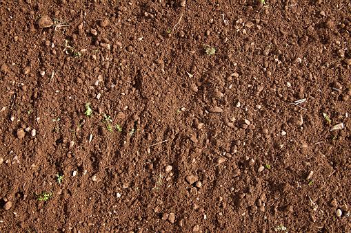 Fertile soil background
