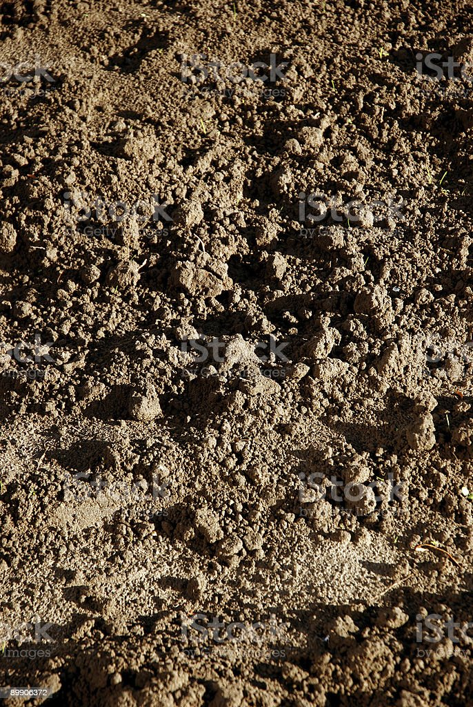 Soil background royalty-free stock photo