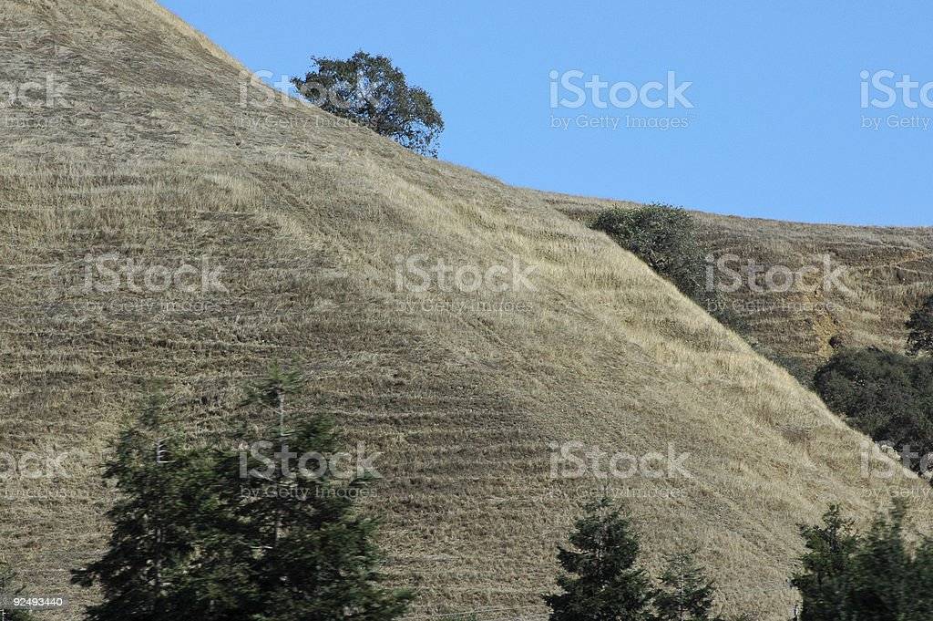 soil creep royalty-free stock photo